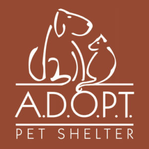 adopt-pet-shelter-clarks-car-care